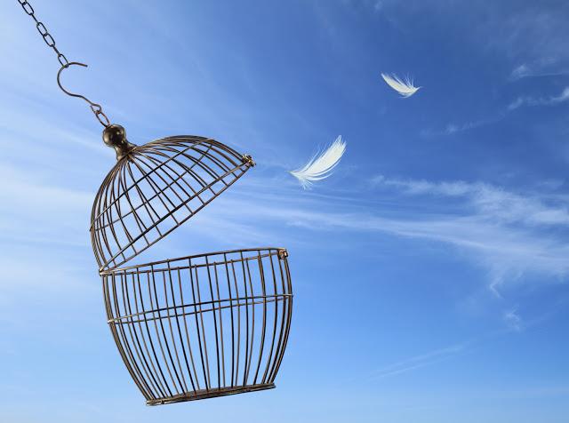 la prigione è la mente, la gabbia è aperta, sta a noi scegliere di uscire