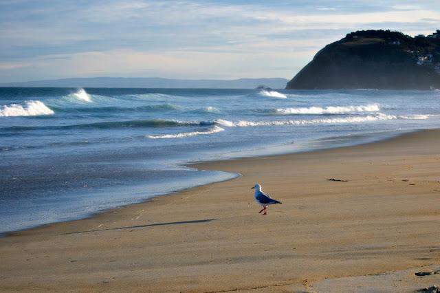 l'amore è come il mare, se lo vuoi sentire ci ti devi immergere...